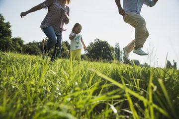 Eltern und Tochter, Spaß auf einer Wiese