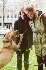 Zwei Frauen mit Hund