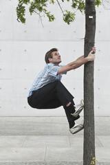 Mann klettert Baum hoch