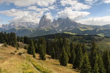 Italien, Südtirol, Dolomiten, Langkofel-Gruppe, Seiser Alm