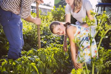 Familie im Gemüsegarten