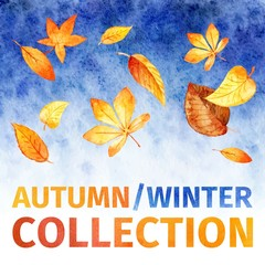 watercolor leaves. autumn winter collection.