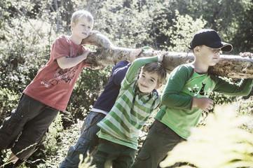 Vier Jungen mit Baumstamm in der Natur