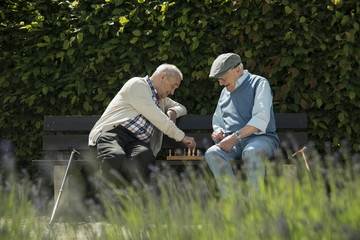 Zwei alte Freunde auf der Parkbank, Schach spielen