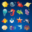 Vector Set of Sea Creatures - 70853738
