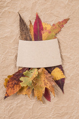 background with dried autumn leaves