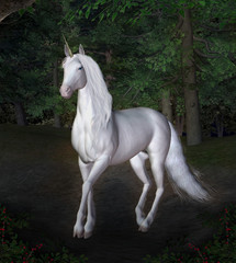 Unicorn in a night forest