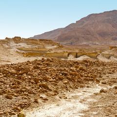 Stony Desert