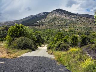 Cerro Torozo