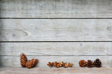 Weihnachten Zapfen