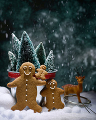 Gingerbread Family In Snow