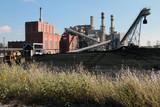Coal Fired Power Plant Coal Yard Wildflowers