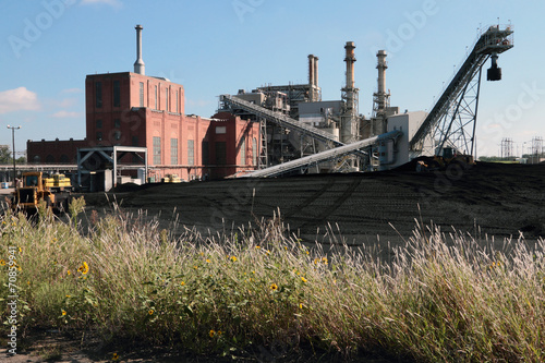 Coal Fired Power Plant Coal Yard Wildflowers