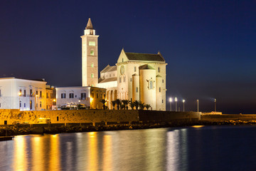 NIght view of the romanesque cathedral of Trani. Alia, Italy.