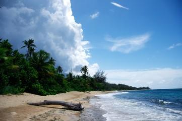 Tropensturm im Paradies