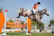 pferdesport reiten