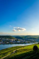 Dämmerung am Rhein