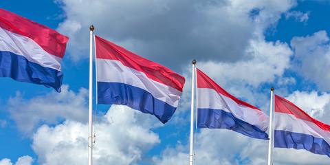 Row of four Dutch national flags