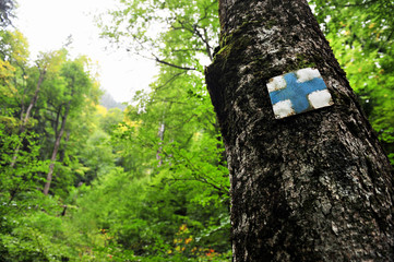 Blue cross hiking and trekking symbol