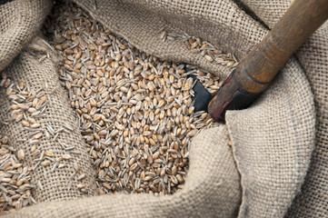 Getreidefüllung