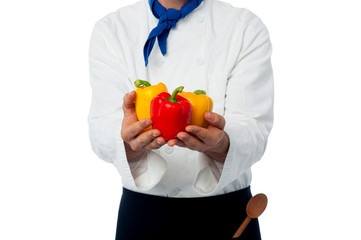 Chef hands showing fresh capsicums