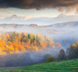 Colorful autumn landscape in the foggy mountains