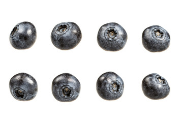 Blueberry set isolated on white background