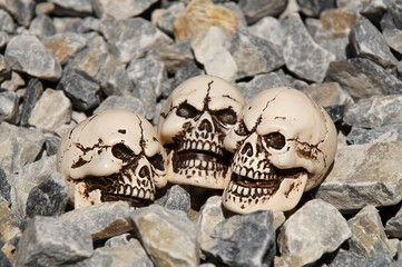 Three skulls lying in the stones.