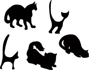 five black cats set isolated on white