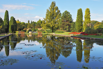 The pond reflects coastal cypresses
