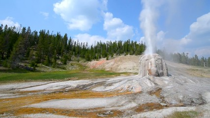Lone Star Geyser during eruption Yellowstone National Park