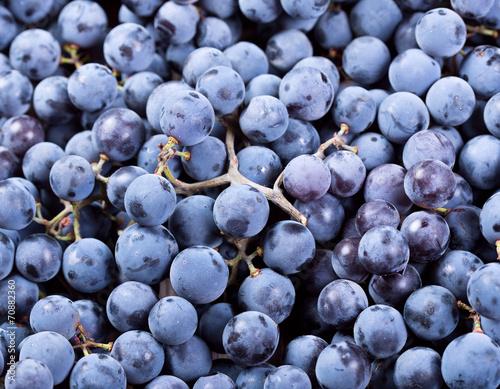 canvas print picture fresh grape