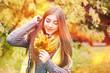 Attractive girl in october Wood