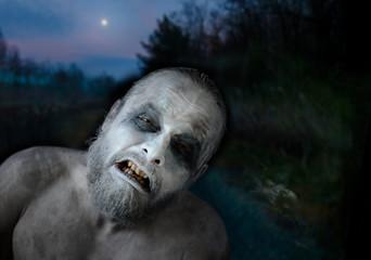 Horror der Vollmondnacht