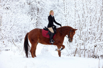 Girl and bay stallion - riding horseback in snowfall