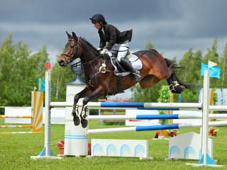 Rider on bay horse in sports jumping show