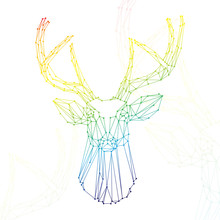 Deer rainbow head on white background