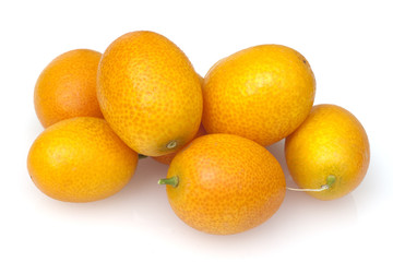 Kumquats; Fortunella; Citrus;