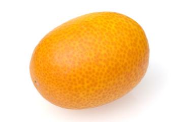 Kumquats; Fortunella; Citrus;