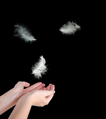 Close up of white feather falling to hands