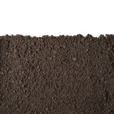 Soil section texture isolated on white
