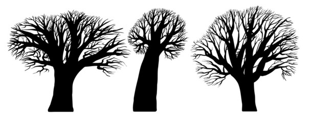 Three black silhouettes of trees on a white background