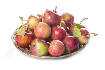 Frutero con manzanas aislado sobre fondo blanco