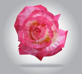 Rose flower vector isolated geometric illustration