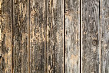 Tavole di legno bagnato