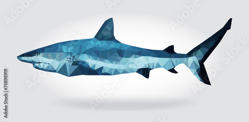Shark body vector isolated geometric modern illustration - 70898919