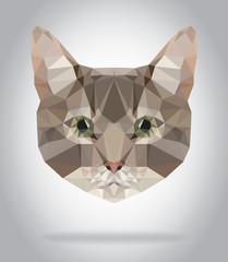 Cat head vector isolated, geometric modern illustration