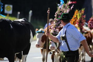 Almabtrieb in Bayern