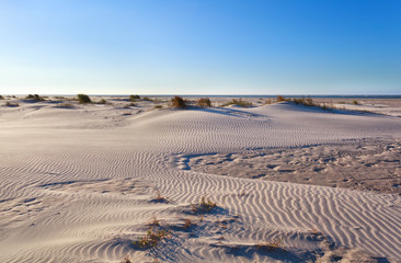 sand dunes on North sea coast after sunrise