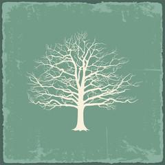 Old bare tree on vintage paper. Vector illustration